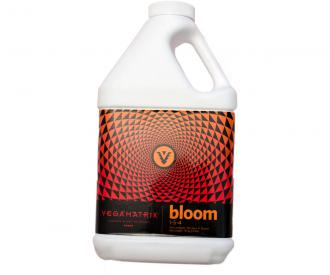 Bloom, 1 gal