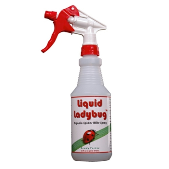 Liquid Ladybug 16oz Bottle RTU